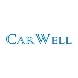 CarWell - brzdové destčky, bubny a pakny, homokinetické klouby a osy, spojkové díly, řízení, chladiče, plynové vzpěry, stahovačky oken, olejové vany, nápravnice, světla a mlhovky, alternátory a startéry, díly karosérie - blatníky, čela, nárazníky, podběhy