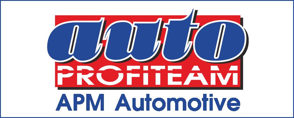 AutoPROFITEAM