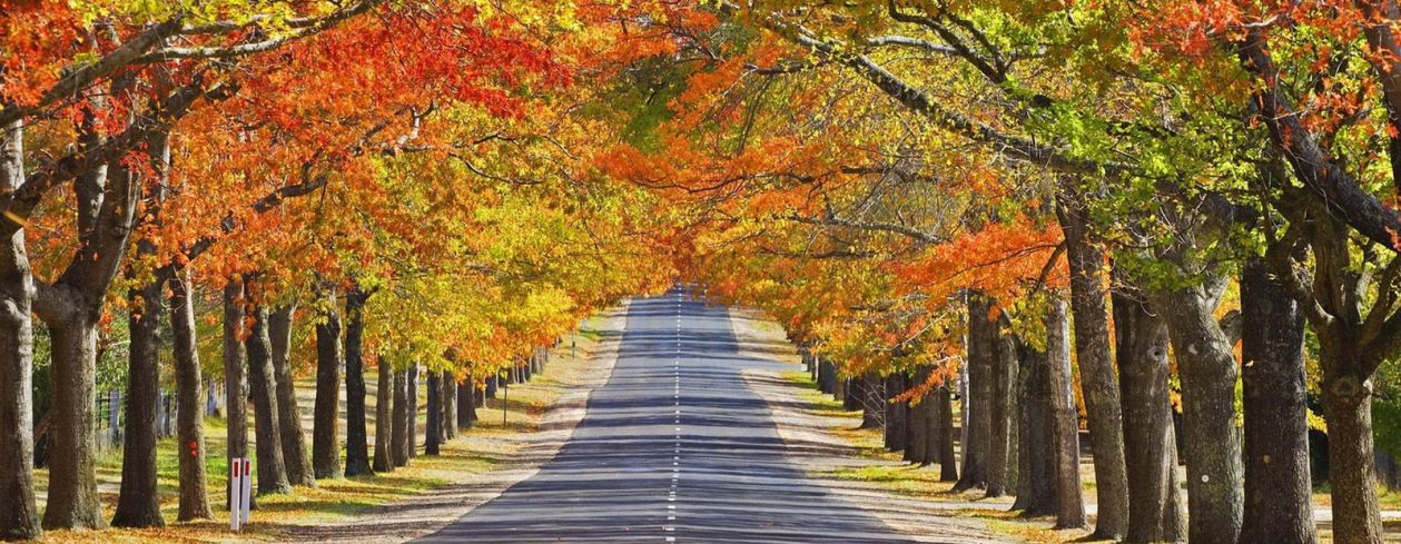 Velká podzimní